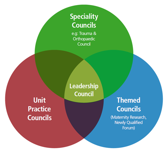The 3 types of Shared Governance council